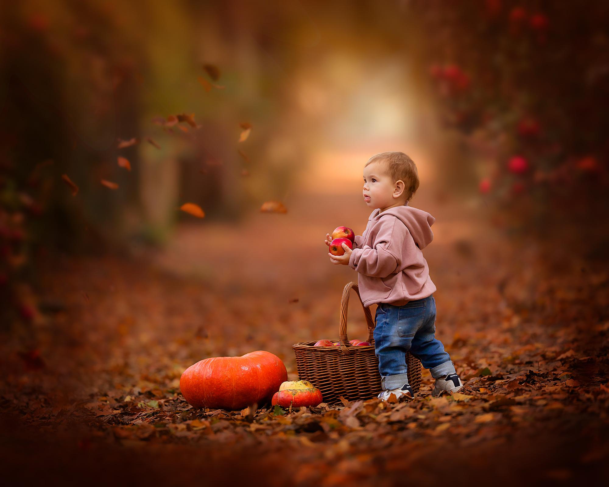 foto van een jongetje die appels plukt in een herfstbos tijdens een workshop van natuurlijk licht fotograaf Willie Kers uit Apeldoorn