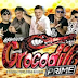 Cd Gigante Crocodilo Prime ao Vivo no Lapinha do Outeiro 23 07 2018 Dj Patrese