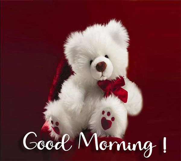 cute good morning wishes image with teddy