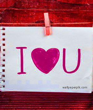 dil rose i love you photo dil pe i love you photo dil m i love you photo