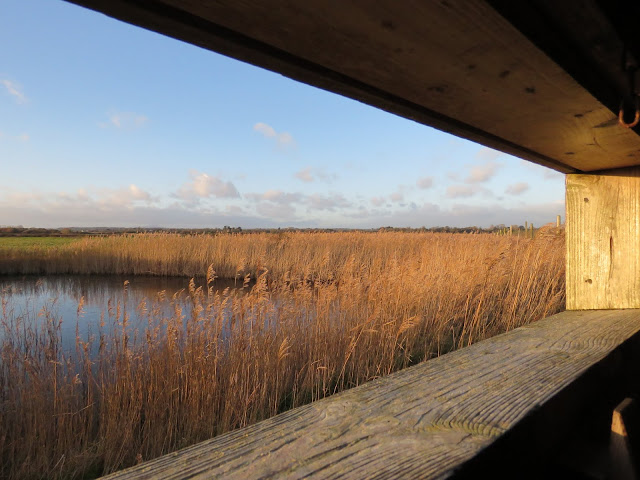 Viewing window of a birdwatching hide at the Wexford Wildfowl Reserve