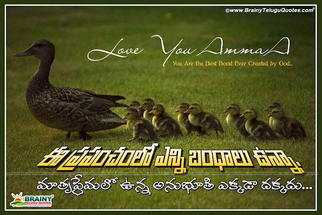 Here is Father quotes in telugu, Mother quotes in telugu, Nice inspirational Quotes about father and mother, Nice Relationship quotes in telugu, Beautiful telugu relationship quotes, Best Father quotes in telugu, Best Mother quotes in telugu, Amma kavitalu, nanna kavitalu telugulo.Mother Quotes in Telugu, Amma kavithalu Telugu, Mother Quotes in Telugu, Amma kavithalu Telugu, Mother's Day Telugu Quotes Greetings, Happy Mother's Day Quotes Greetings in Telugu, Nice Mother's Day Telugu greetings for friends, Mother's Day Wishes greetings pictures wallpapers, Telugu mother Quotes with shubhodayam, Inspirational quotes in telugu, Mother quotes in telugu, Relationship quotes in telugu, Best Good morning Quotes in telugu, Nice inspiring good morning quotes with nice thoughts, new latest good morning telugu quotes for friends...