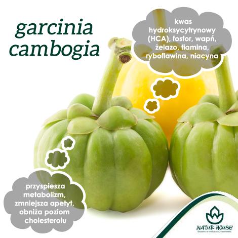 garcinia cambogia wikipedia polska