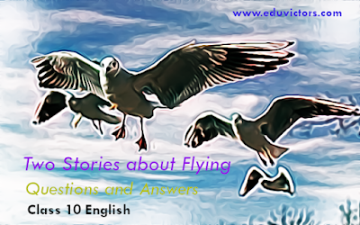 Class 10 - English - First flight – Chapter 3: Two Stories about Flying (Questions and Answers)(#class10English)(#eduvictors)
