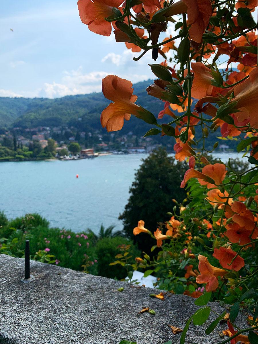 """Utsikt från """"Italianate garden"""" - en symmetrisk trädgård"""