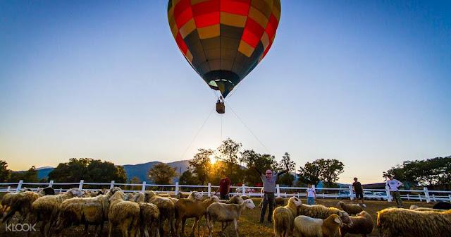 Tethered Hot Air Balloon Ride