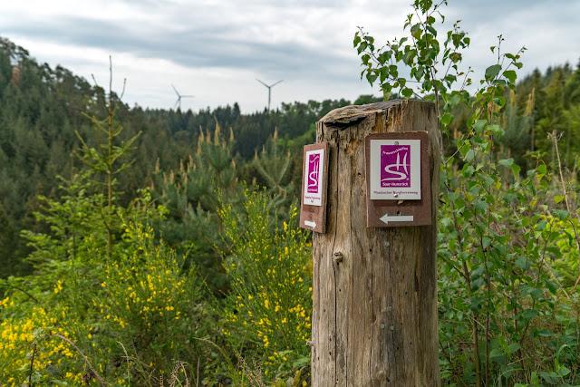Traumschleife Masdascher Burgherrenweg  Saar-Hunsrück-Steig  Wandern Kastellaun  Premiumwanderweg Mastershausen  Deutschlands schönster Wanderweg 2018 13