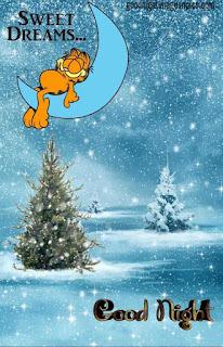 Winter Good Night Images
