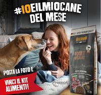 Concorso Belcando #IoeIlMioCane : vinci gratis Kit Alimenti