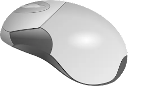 What is Mouse