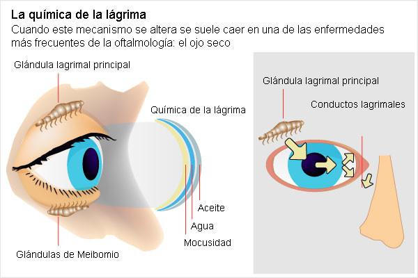 El ojo seco. FOTO: Barcelona Alternativa