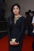 Poonam Kaur dazzling at Thikka audio-thumbnail-5