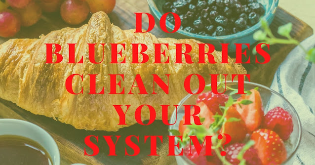 Do blueberries clean out your system