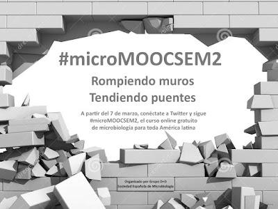 http://www.investigacionyciencia.es/blogs/medicina-y-biologia/43/posts/vuelve-micromoocsem-ciencia-en-twitter-14964?utm_source=Twitter&utm_medium=Social&utm_campaign=tw+web