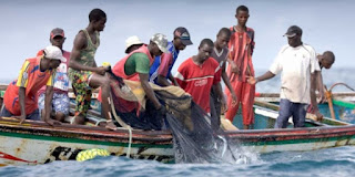 Guinea arrests 107 Senegalese fishermen for crossing maritime border