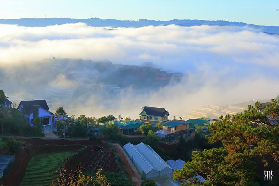 Những ngọn đồi được giăng kín bởi sương sau mưa tại Đà Lạt - Ảnh: Trương Ngọc Thụy