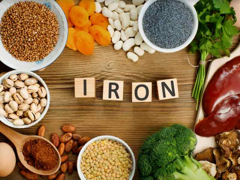 All you need to know about the importance of iron to the human body