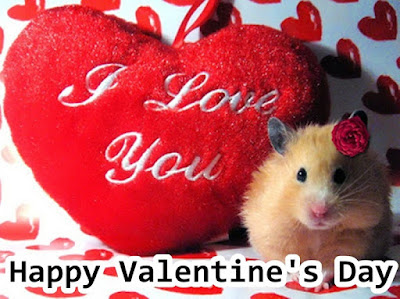 Happy-valentines-day-images-love