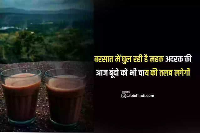 tea lover quotes in hindi,