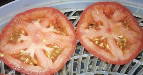 Making tomato powder at home, how to use tomato powder, preserving tomatoes, sun dried tomatoes