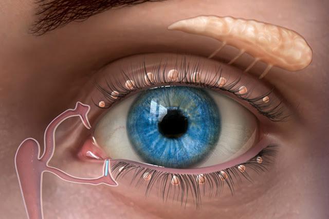 أسباب جفاف العين وما هي طرق علاجه