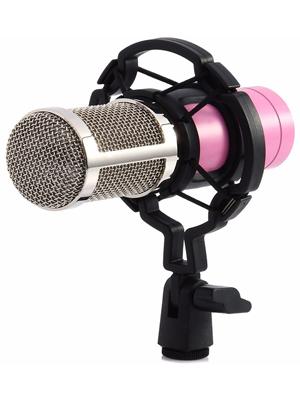 Bộ Micro livestream tại nhà BM 800
