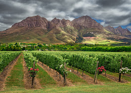 Helderberg Mountain South Africa