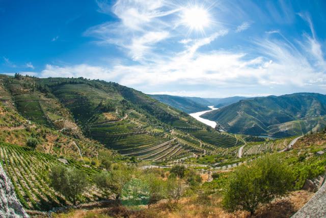 Alto Douro (Vale do Douro)