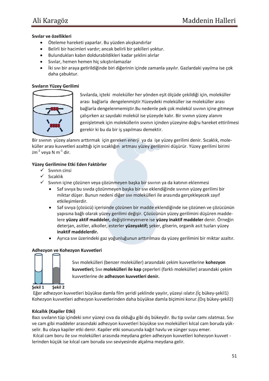 Noocleolin: kullanım, yorumlar, analog talimatları 40