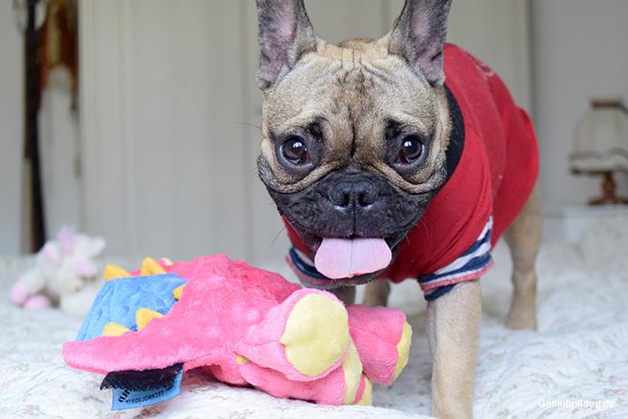 Hundespielzeug Drache