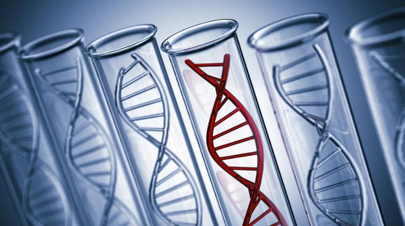 Genetic Testing For Breast Cancer Gene Mutation