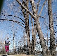 Coureuse, arbre, parc de la Merci