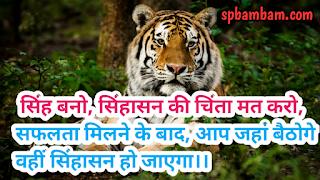सिंह बनो, सिंहासन की चिंता मत करो inspiration shyari, motivational shyari