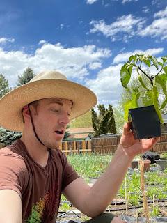 Pepper Roots