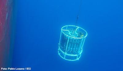 NP 240620 RADMED - El IEO continúa con la monitorización ambiental del Mediterráneo