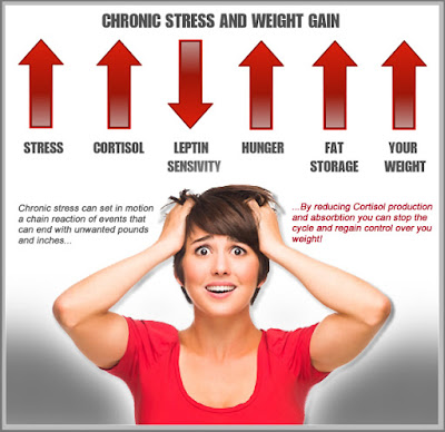 Stress Can Trigger Fitness Regression