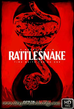 Rattlesnake [1080p] [Latino-Ingles] [MEGA]