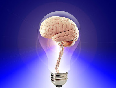 some-surprising-facts-about-the-human-brain