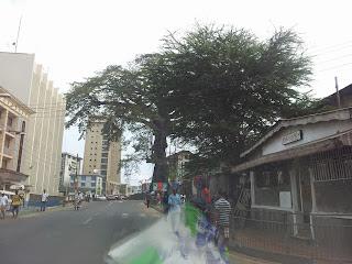 Cotton Tree Freetown seen from car (picture: Ytzen Lont)