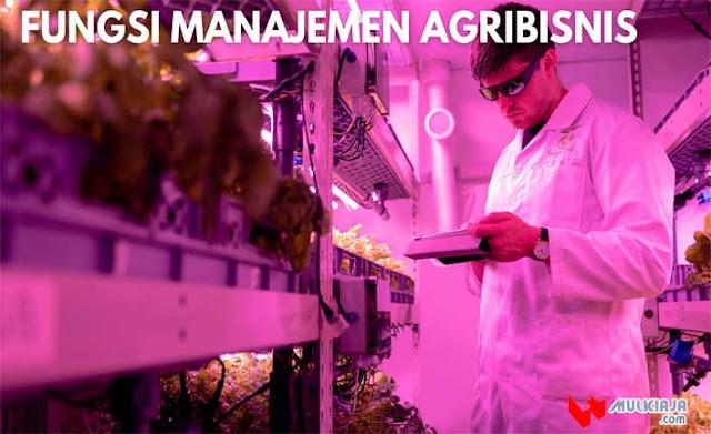 Fungsi Manajemen Agribisnis