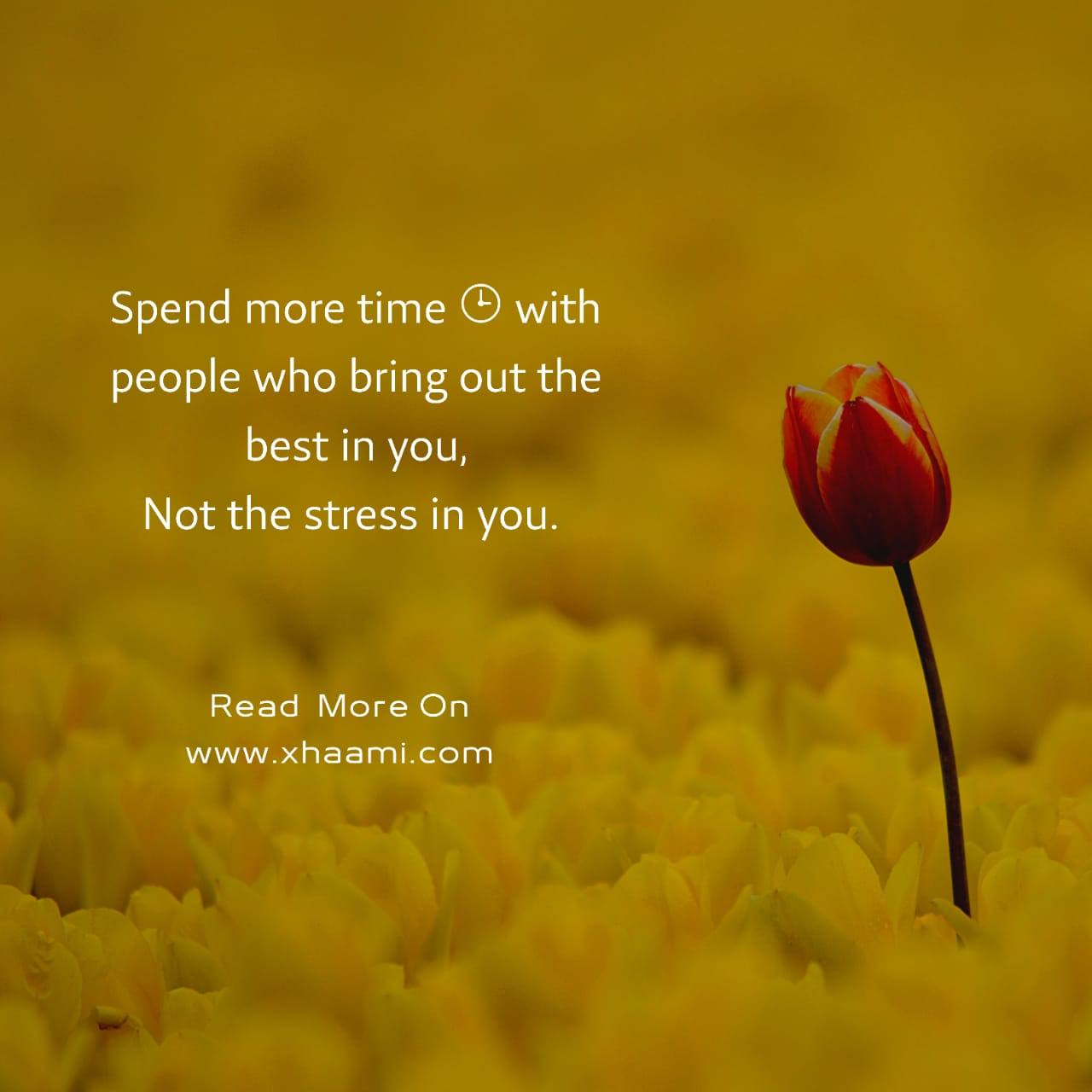 Spend more time  with people who bring out the best in you    There are many people around us but some people are special this quote is written for those who make our life more special. When we talk with them we feel delighted and when we are sad they bring smile on our face.  If you have such persons in your life then must share this quote link to them so they can know that what you feel about them.       Quote text: Spend more time ⌚ with people who bring out the best in you, Not the stress in you.
