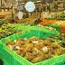 Khóa học khởi nghiệp kinh doanh với mô hình cửa hàng Thực phẩm sạch