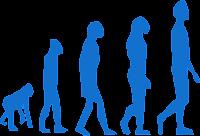 Exercícios evolução dos seres vivos 7 ano
