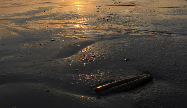 Langeoog, Nordsee, Ostfriesland, Watt, Watt wandern, Meer