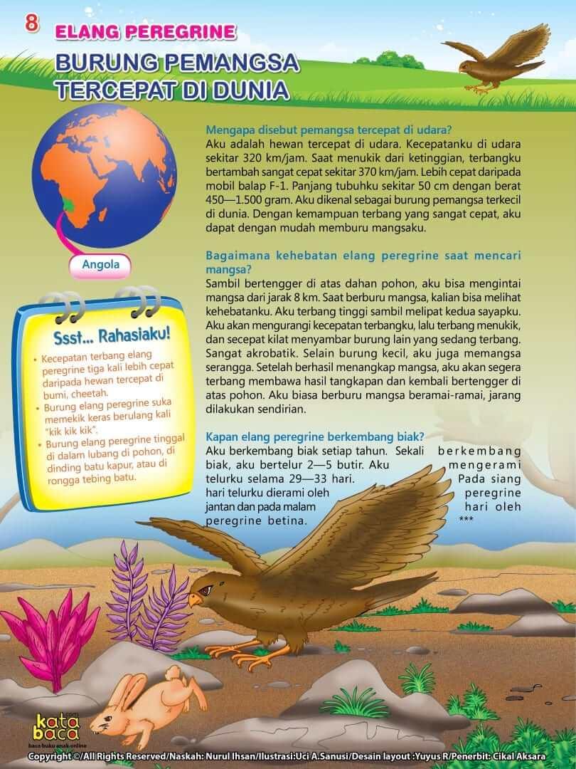 Burung Elang Peregrine - Burung Pemangsa Tercepat di Dunia