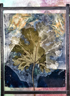 Wet cyanotype, Sue Reno, Image 18