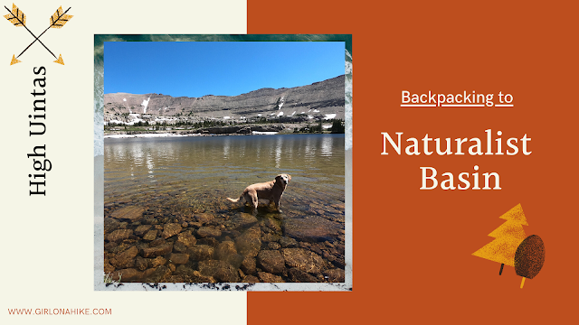 The Best Backpacking Trips in the Uintas, naturalist basin uintas