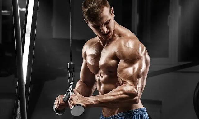 تمارين لبناء عضلة التراي ( ثلاثية الرؤوس )
