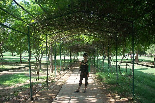 Buddha Jayanti Park Photos Images