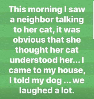 Neighbour talking to her cat